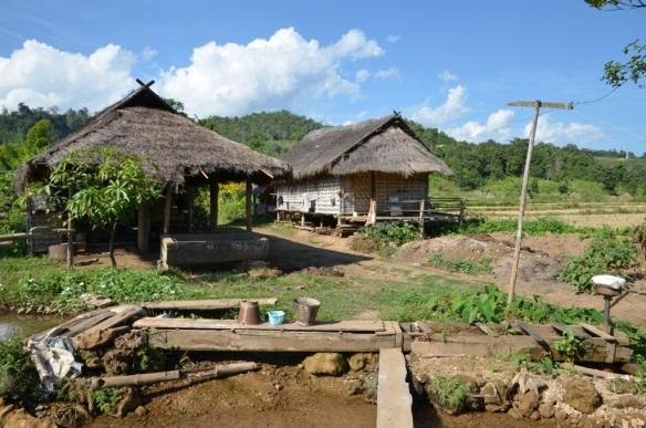 Les maisons en bambou.