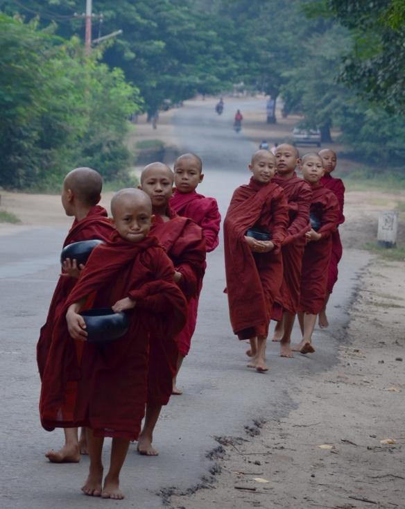 Petits novices avec leurs bols à offrandes très tôt à l'aube