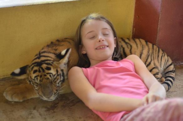 Emma fait la sieste avec son tigre