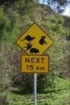 Affiche routière animaux