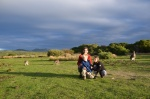 Rencontre fascinante avec les kangourous